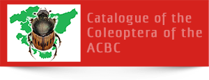 catalogue of the coleoptera of the ACBC